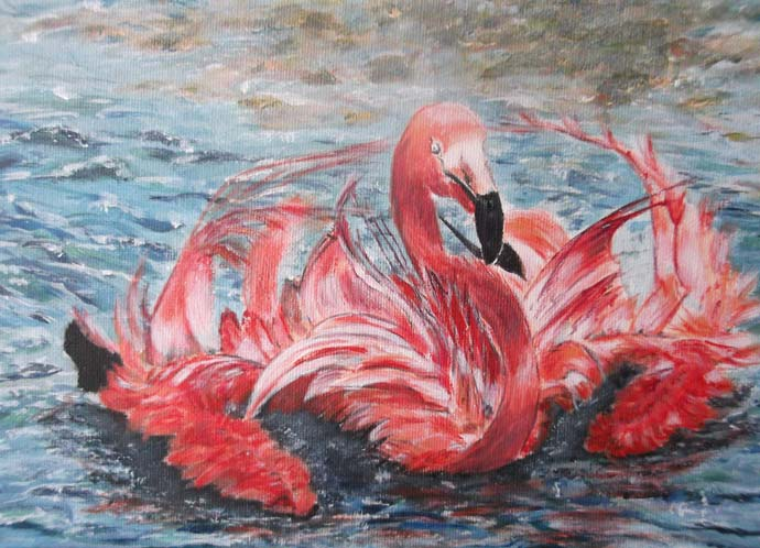 photo_tableau_flamand rose